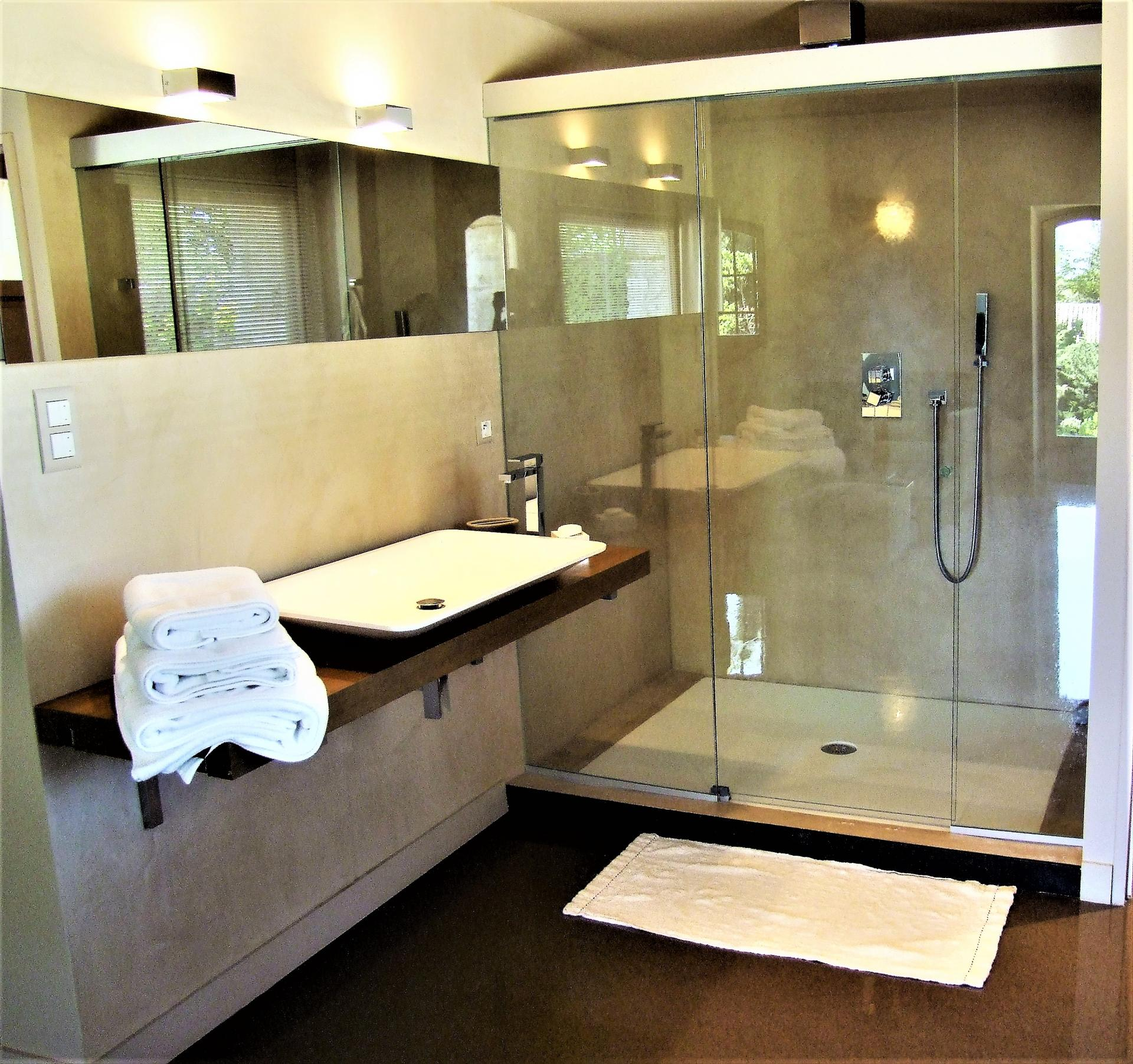 A BATHROOM WITH SHOWER IN LA DEMEURE DES SEIGNEURS VILLA